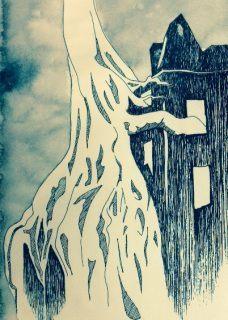 les racines des ormes